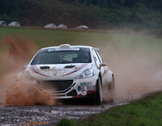 Renn- und Rallysport
